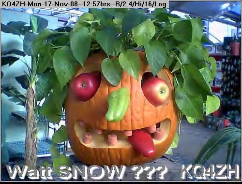 081117125538-pumpkin1.jpg