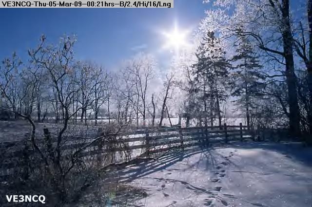 090305002024-FrostyMorning.jpg