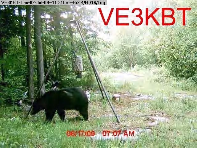 090702112856-deer feeder 045.jpg
