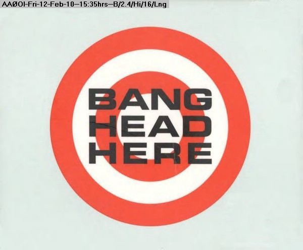 100212143225-Bang_Head_Here.jpg