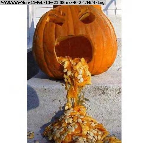100215210402-pumpkin.jpg