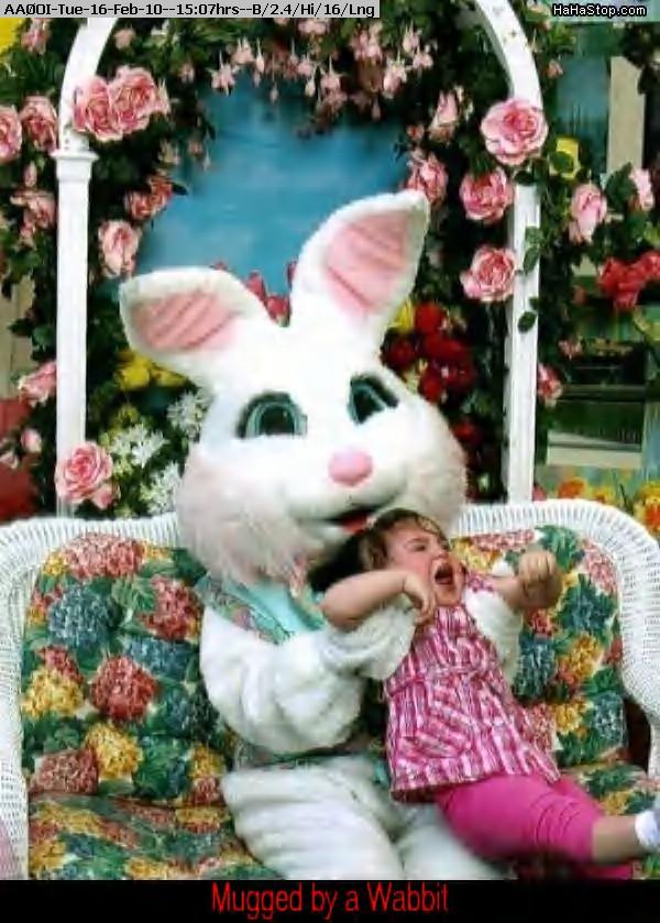 100216140440-So_Scared_Of_The_Bunny.jpg