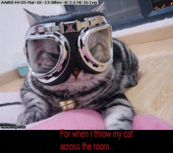 100305123507-Ski_Cat.jpg
