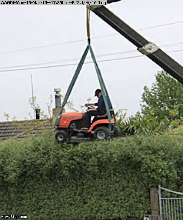 100315173332-Lawnmower_Hedge.jpg