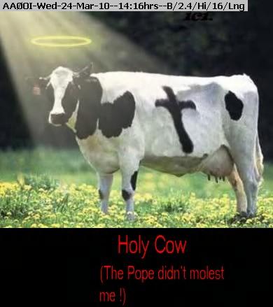 100324141421-holy-cow.jpg