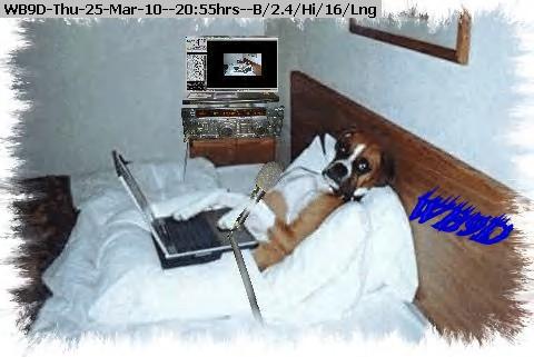 100325205404-DOG1.jpg