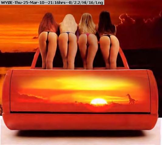 100325211529-chicks_and_cars_40_jpg.jpg