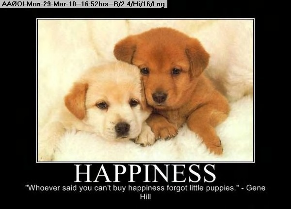 100329165029-Happiness255.jpg