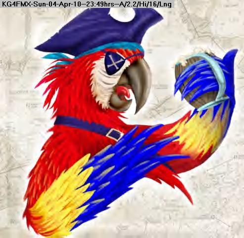 100405004820-parrot.jpg